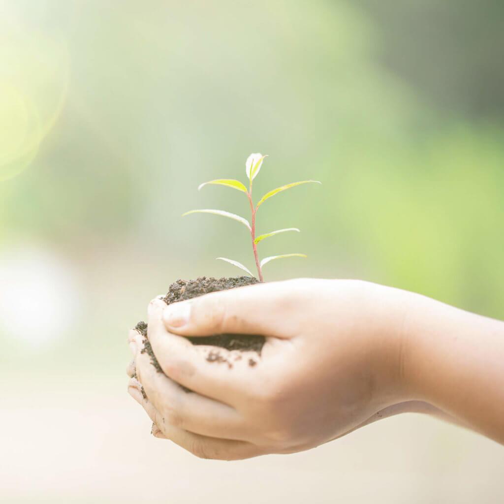 valoriser dechets transition ecologique