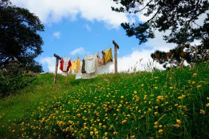 lessives ecologiques